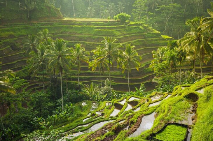 Why travel to Bali 2